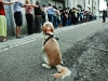 2012_streetwalker_chalon_fr_by-tomasz-foltyn_7713.jpg